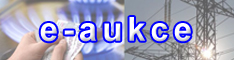 e-aukce banner