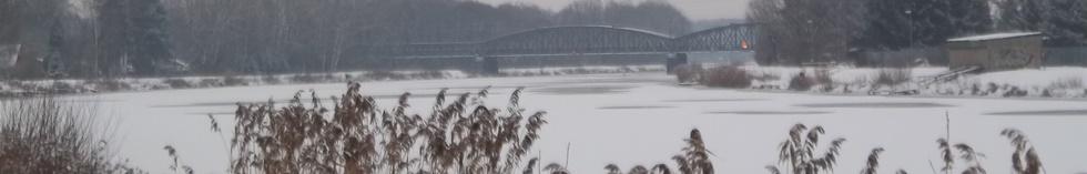 most na web